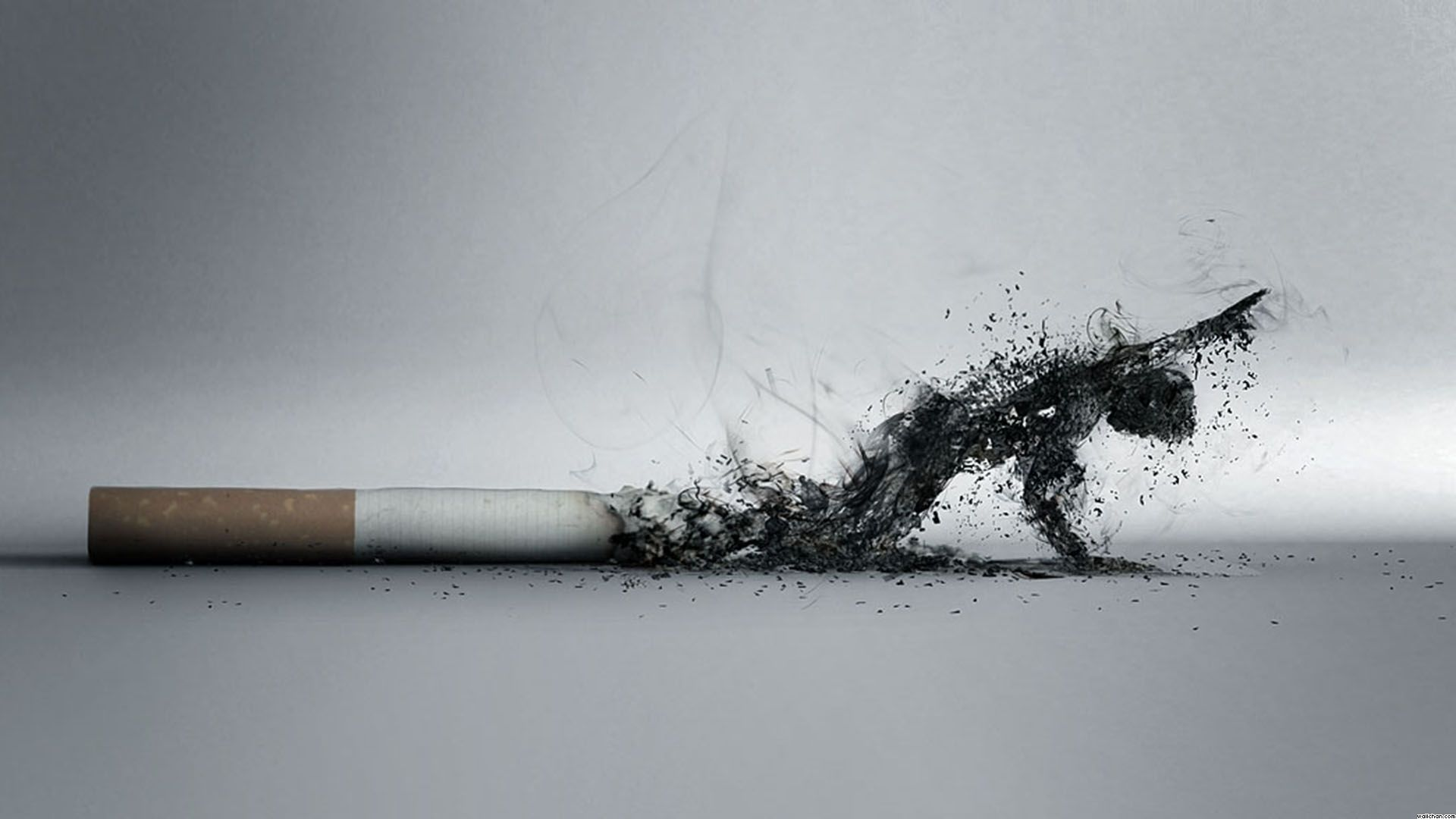Smoking cigarettes has been linked to developing gray hair before the age of 30.