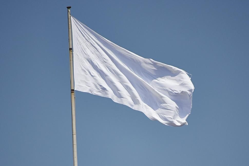 From 1814 to 1830, the flag of the Kingdom of France was plain white.