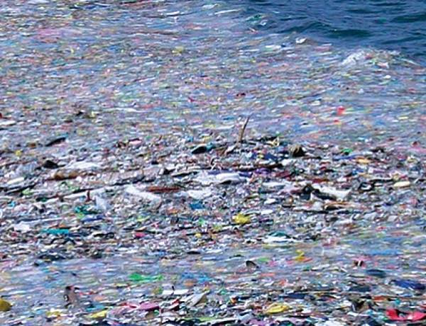 There is a garbage swirl in the ocean the size of Texas.