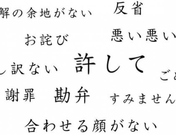 In Japanese, there are at least 20 different ways to say 'sorry'.