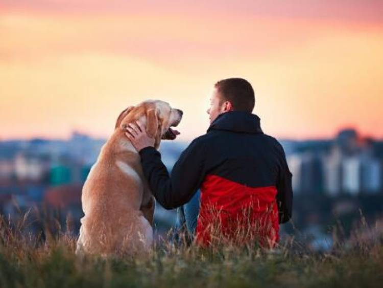 Most dog owners would rather spend time with their dog than with other people.