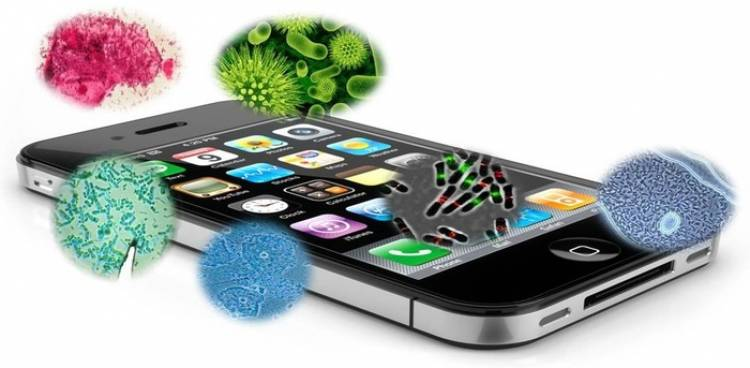 Mobile phones have 18 times more bacteria than toilet handles.