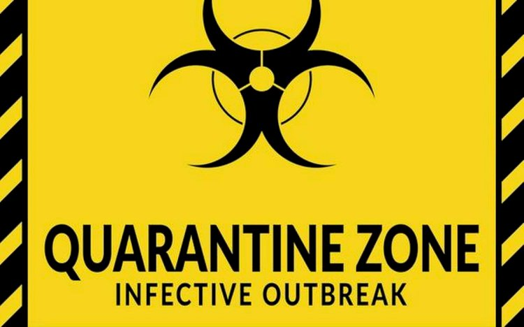 The word 'quarantine' derives from the Venetian dialect of Italian and the words 'quaranta giorni', meaning 'forty days'. This is because when it was discovered that ships were infested with plague-carrying rats they were made to sit at anchor outside Venice's city walls for forty days before coming ashore.