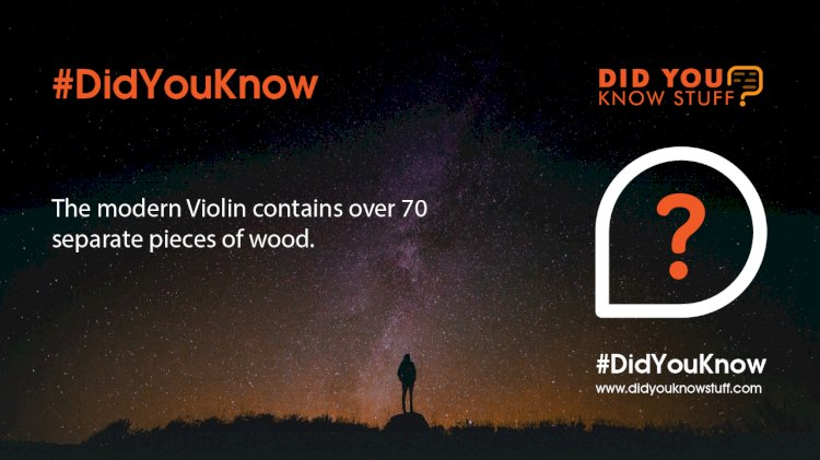 The modern Violin contains over 70 separate pieces of wood.